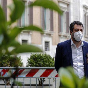 Salvini, Ansa