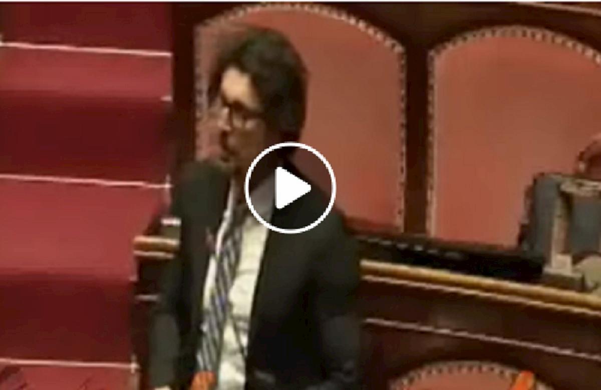 toninelli attacca lega in senato