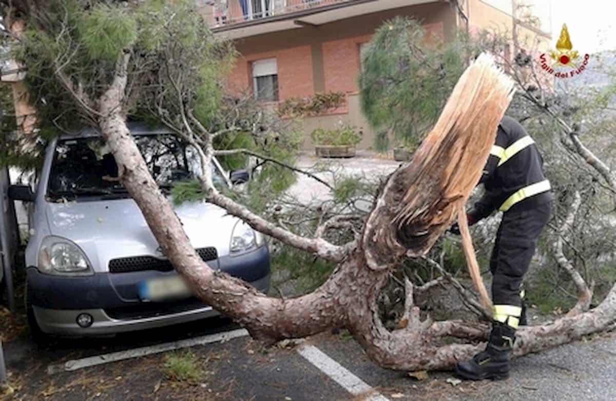 Parma, tromba d'aria in città: alberi e rami caduti in strada