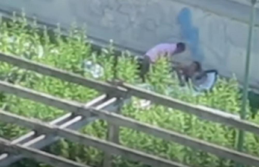Coppia consuma un rapporto all'aperto VIDEO. Uomo e donna denunciati a Torino