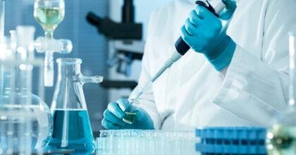 Embrione ibrido topo-uomo per produrre organi per trapianti