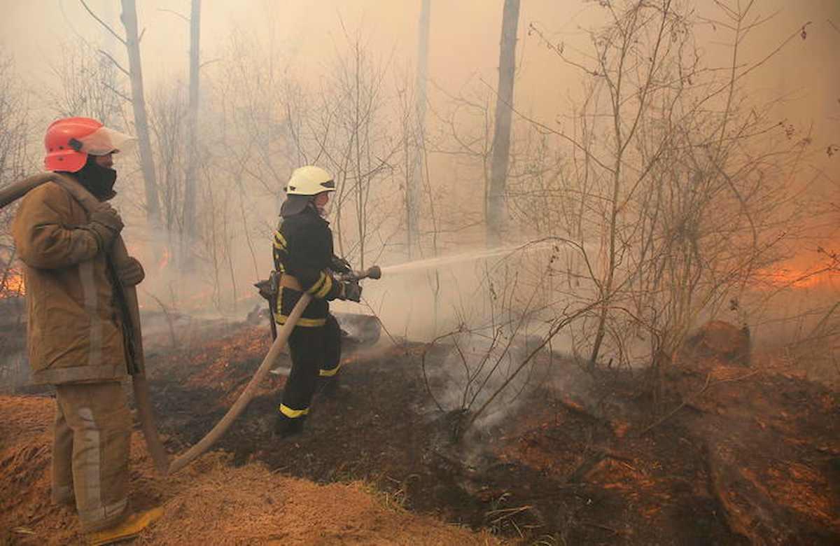 Reitano, paese assediato dalle fiamme: incendio divampa alimentato da scirocco