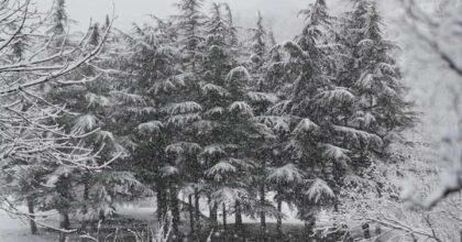 Meno neve nel 78% aree montane del mondo: Alpi orientali in sofferenza
