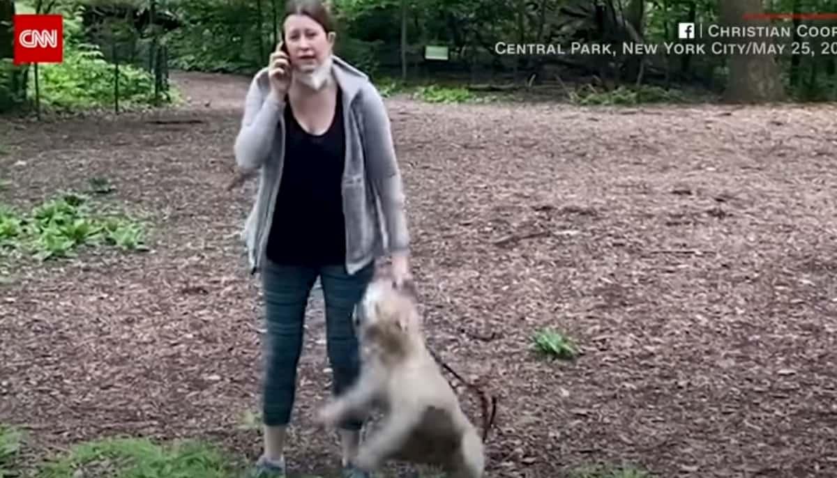 """New York, rifiuta di tenere il cane al guinzaglio e chiama polizia: """"Afroamericano mi minaccia"""". Video virale, licenziata per razzismo"""