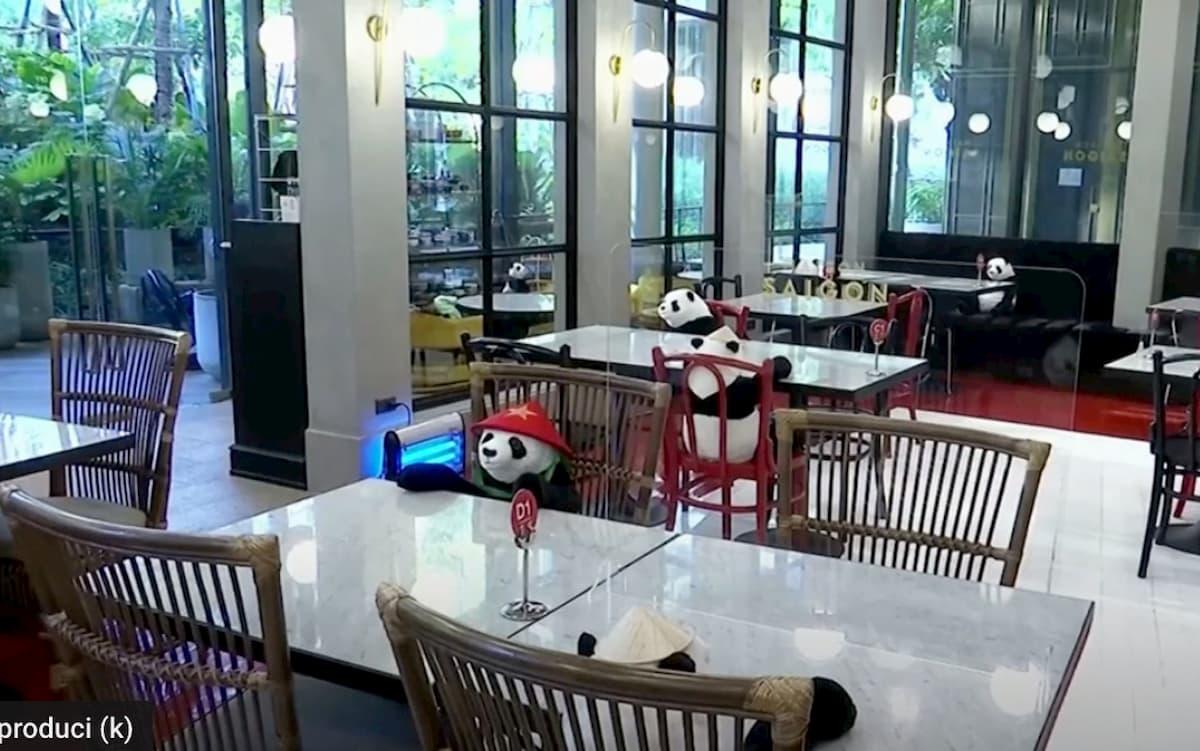 Lockdown, peluche a forma di panda e manichini per combattere la solitudine al ristorante VIDEO