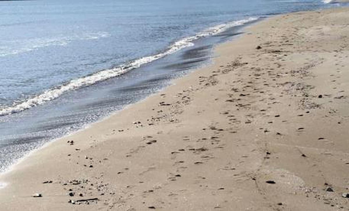 Coronavirus, si trasmette al mare, in spiaggia, in piscina? Le risposte del microbiologo