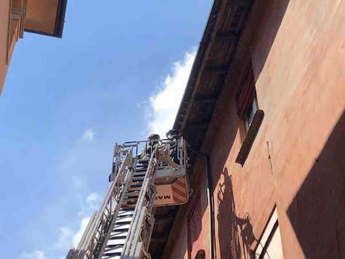 Napoli, accende la luce e la casa esplode: grave donna di 55 anni