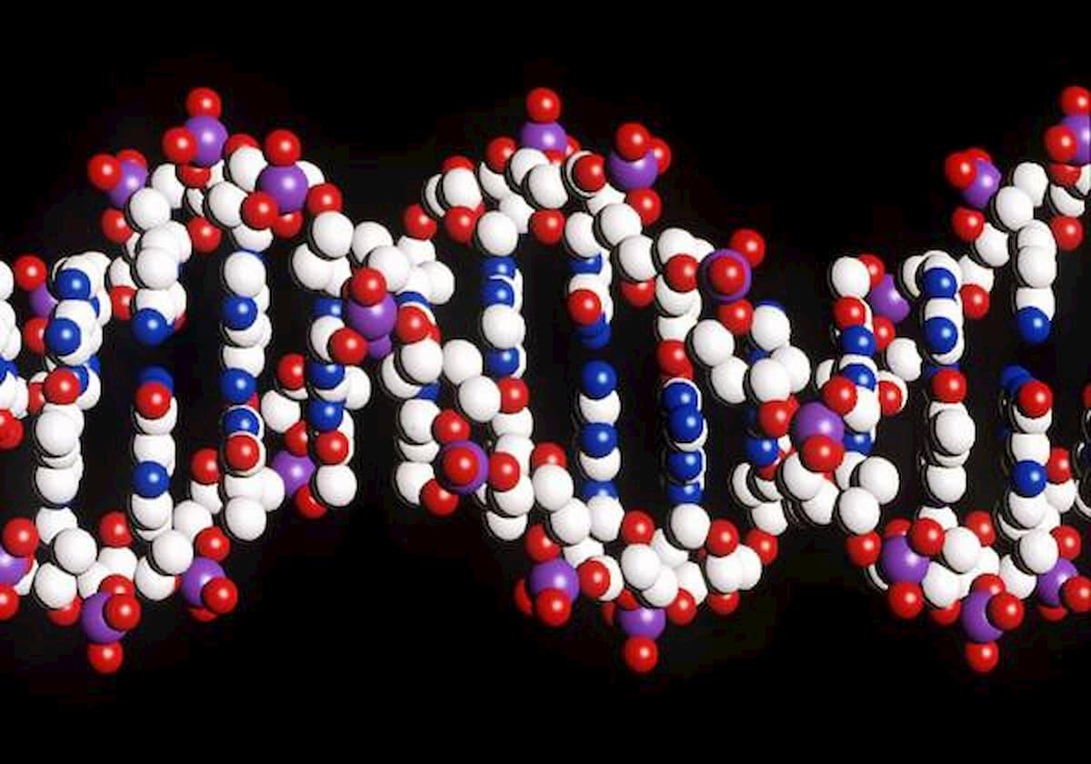 Scoperte nuove mutazioni genetiche legate all'autismo