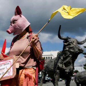 Le proteste degli animalisti dopo il focolaio nel mattatoio Toennies in Germania