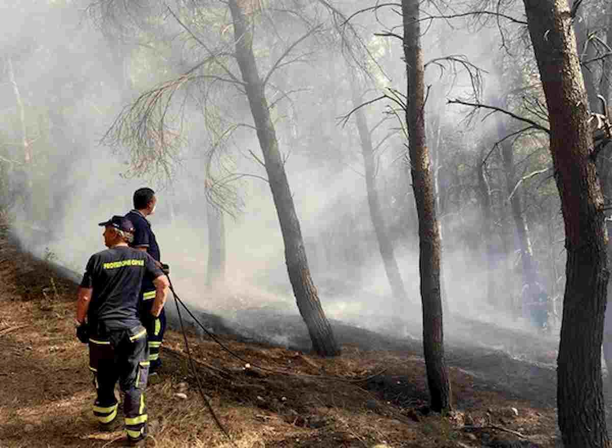 Ascoli Satriano, incendio al Bosco Serpente. Taglia di 5 mila euro per trovare i piromani