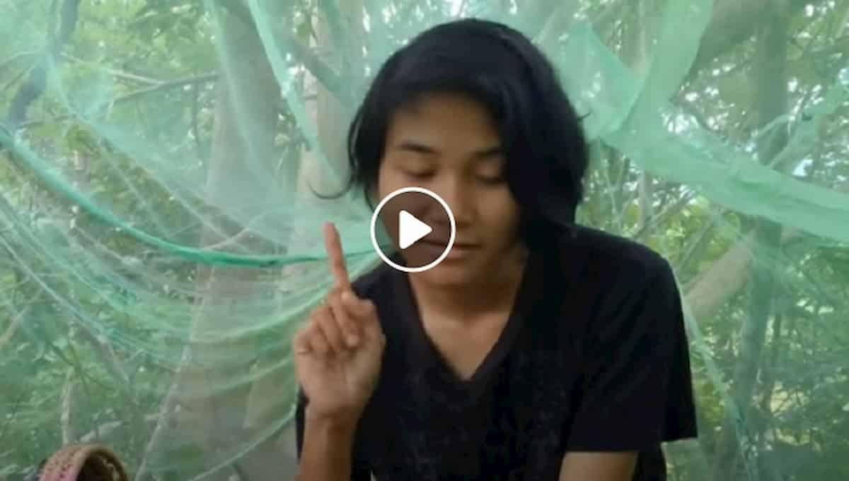 Malesia, ragazza di 18 anni per 24 ore sull'albero per fare un esame. Lì internet prende meglio