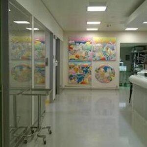 un letto di ospedale, foto ansa