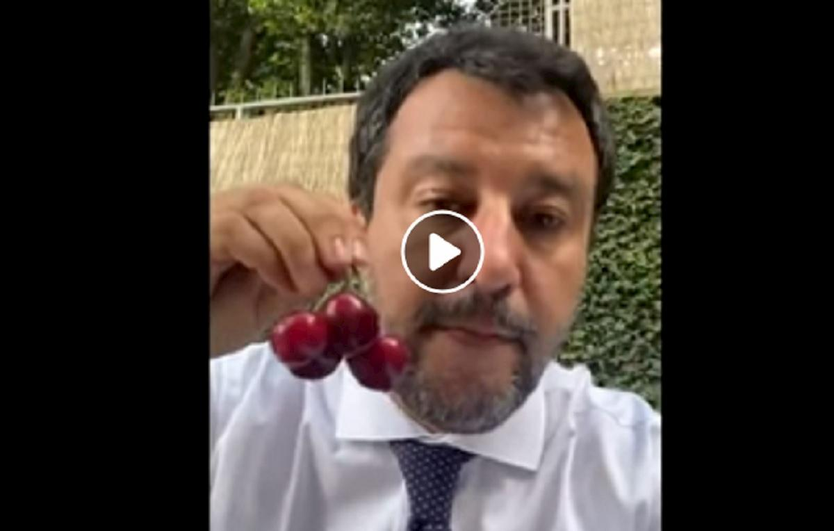 salvini mangia le ciliegie