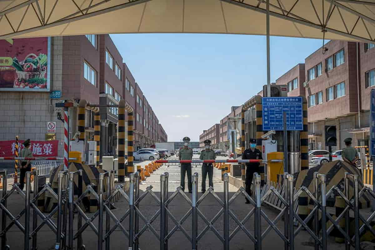 """Pechino, i ricercatori cinesi: """"Il nuovo coronavirus del mercato di Xinfadi viene dall'Europa"""""""