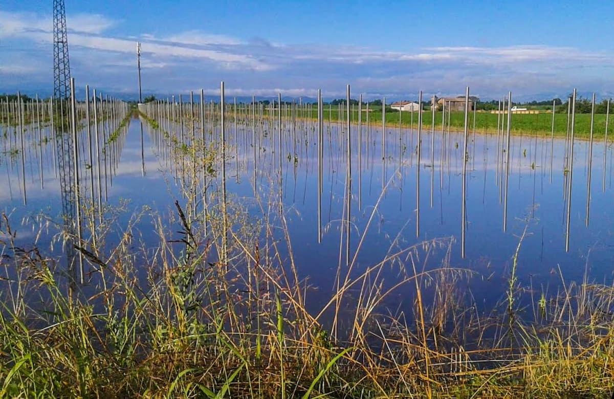 Maltempo al Nord: ci sono stati temporali, allagamenti e danni all'agricoltura