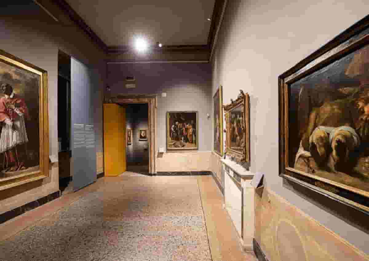 Best Museum Bum, foto d'archivio Ansa