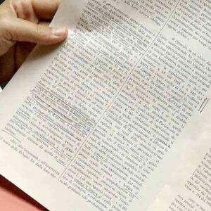 Consulta: indennità licenziamento illegittima in misura fissa