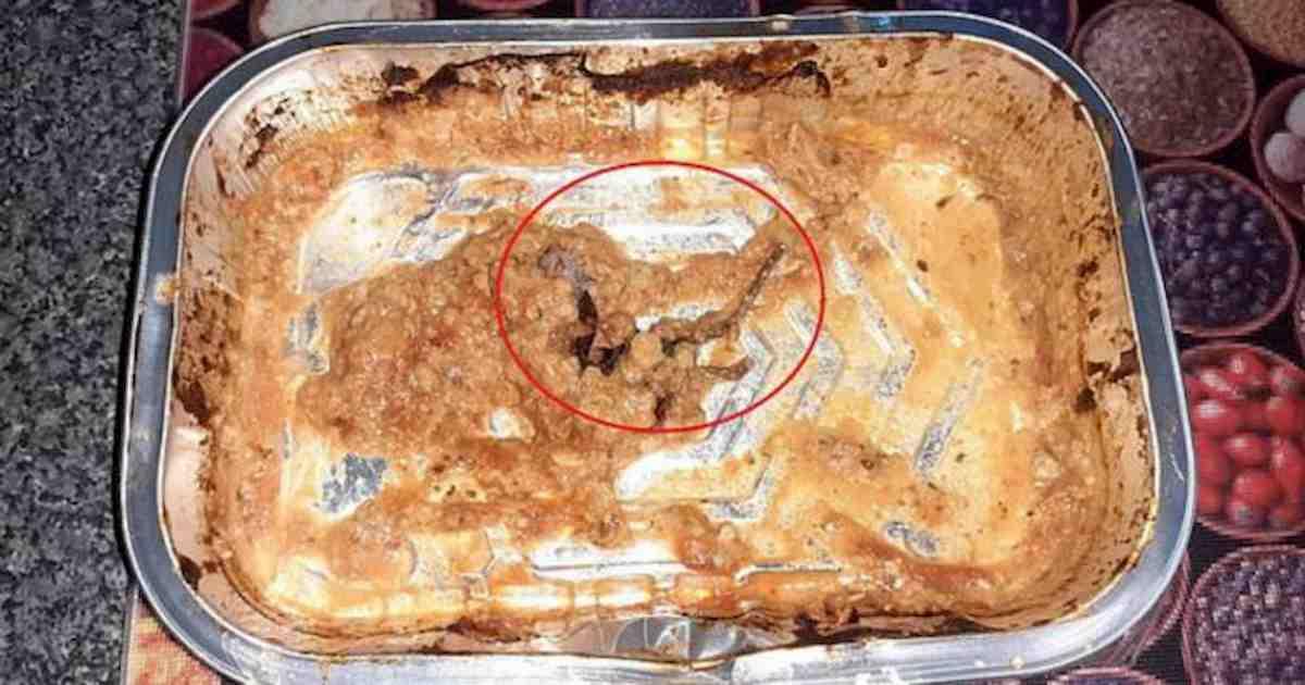 topo morto nel piatto