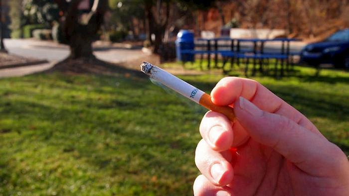 Torino, vietato fumare nei parchi e nei giardini con aree giochi per bambini
