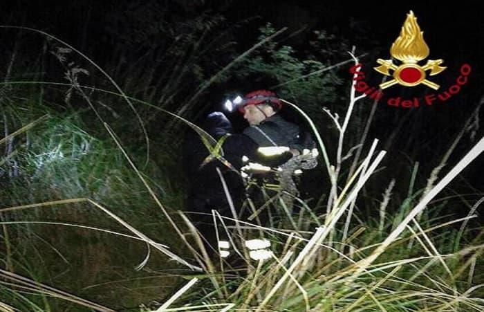 Incidente Cuneo, Ansa