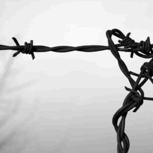 Olocausto, Ansa