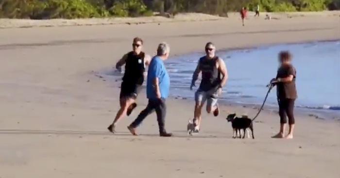 Poliziotti finti runner bloccano ricercato in spiaggia. Finiscono sotto accusa per il placcaggio VIDEO