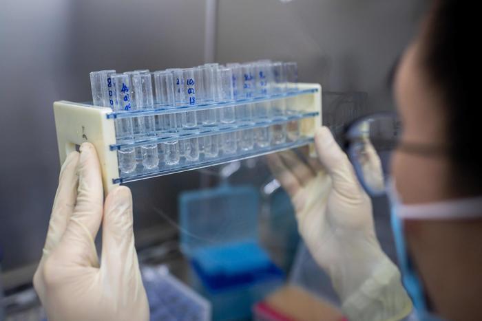 Vaccino Cina approvato