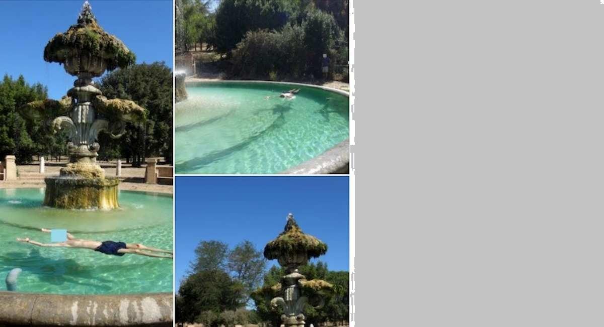Morto a galla nella fontana storica di Villa Pamphili. E sui social lo massacrano