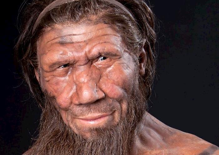 I Neanderthal dal palato raffinato: nel menu carne arrosto, verdure e cervello