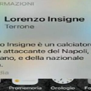 lorenzo insigne terrone