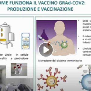 Reithera, vaccino anti Covid italiano finisce la fase 1: basta una dose e si può conservare in frigo