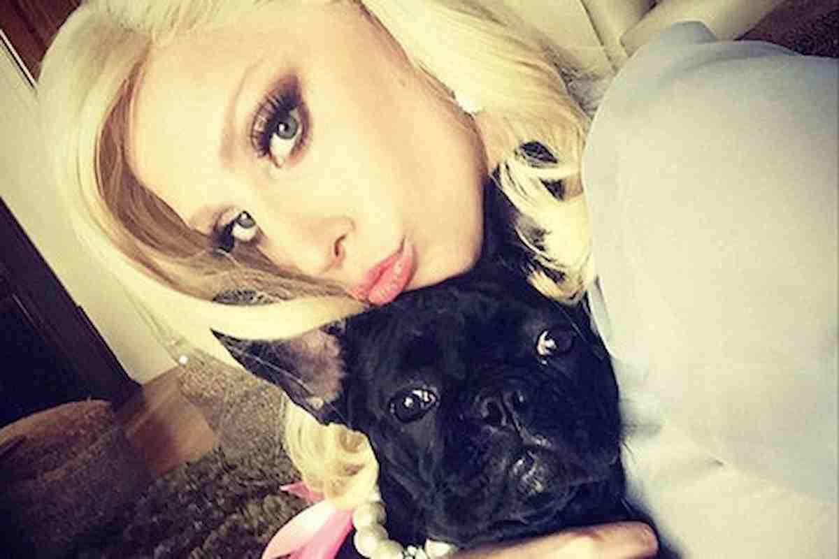Lady Gaga, suoi cani rapiti mentre è a Roma: hanno sparato al dog sitter, è in fin di vita