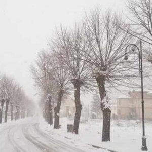 Previsioni meteo: primavera anticipata dopo il gelo di Burian. Temperature in aumento ovunque