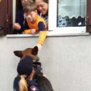 Napoli, bambino chiede di accarezzare il cane poliziotto