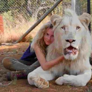 Mia e il leone bianco, storia vera oppure no? Dove è stato girato Mia e il leone bianco?