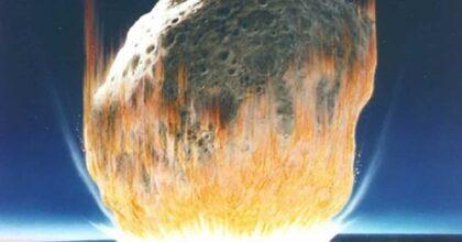 Asteroide che uccise i dinosauri cancellò anche una pianta su due e favorì la comparsa dei fiori: lo studio