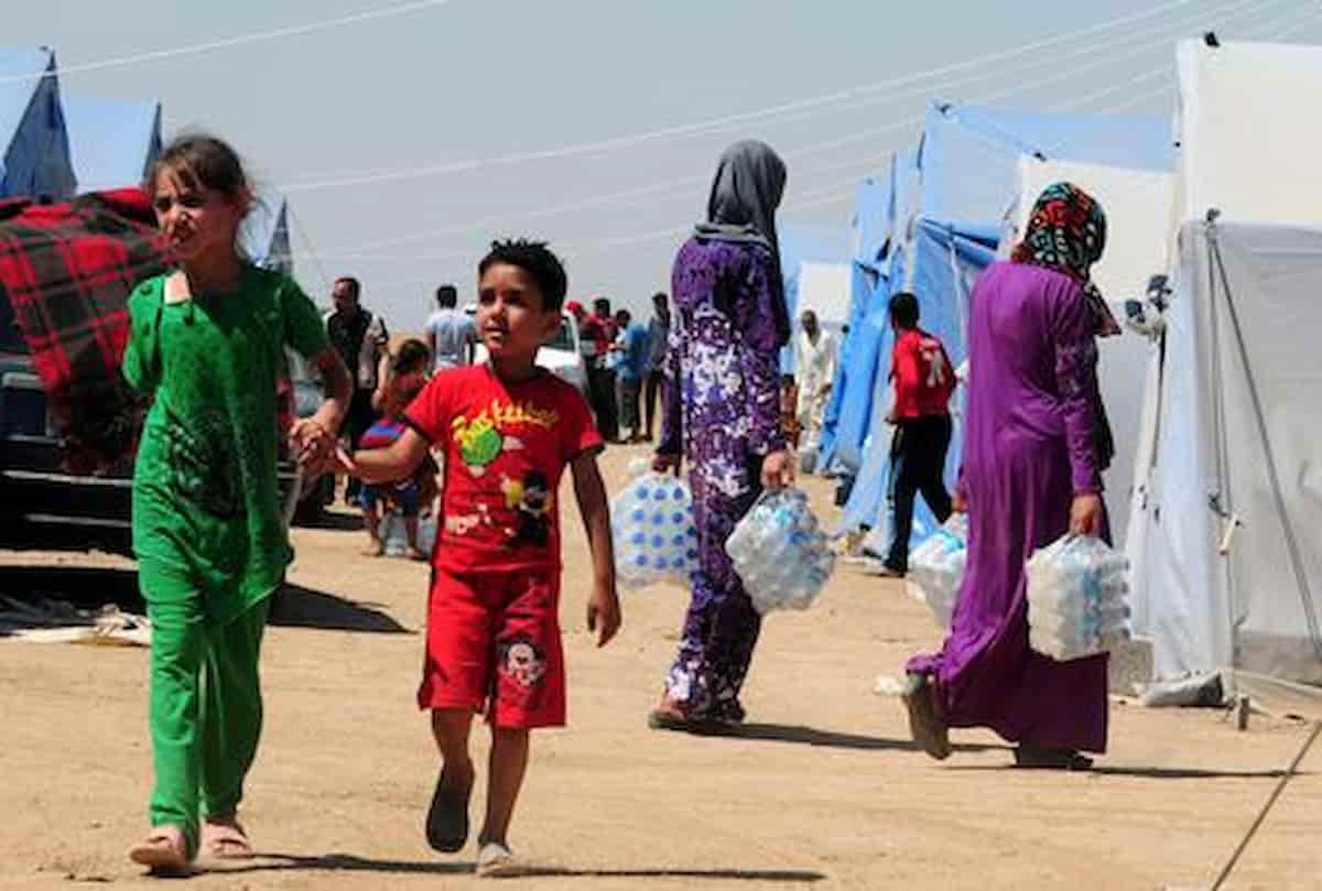 Bambino nasce con tre peni: rarissimo caso di trifallia nel Kurdistan iracheno