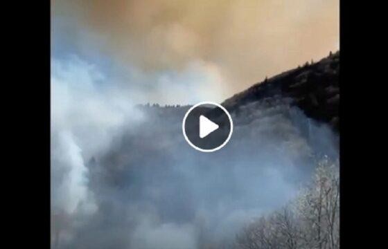 incendio in val cannobina