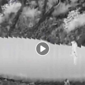 Muro tra Messico e Stati Uniti: due bambine di 3 e 5 anni gettate come sacchi al di là del muro VIDEO