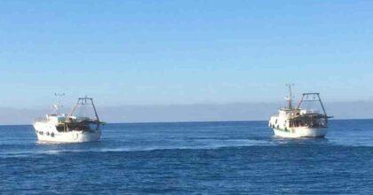 Sirte e Jersey: battaglie navali per il gambero rosso, le capesante e per i voti
