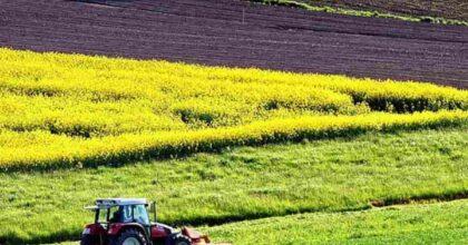 Confine tra Francia e Belgio spostato da un agricoltore che non riusciva a passare con il trattore