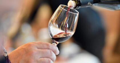 Nel vino c'è troppo alcol, a Bruxelles qualcuno vuole male all'Italia: interessi misteriosi dietro una eurofollia