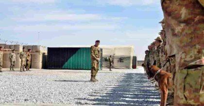 Afghani, 500 cui dobbiamo spalancare le porte