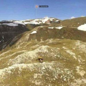 coppia ha rapporto su Alpi Gurkal