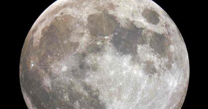 luna rossa, foto ansa