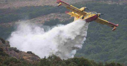 Incendi Sardegna, la pecora carbonizzata nel rogo di Montiferru (Oristano) è il simbolo della tragedia VIDEO