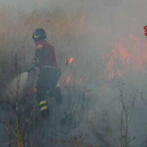 Incendi Calabria, un altro morto: pensionato tra le fiamme ad Acquaro, la quinta vittima