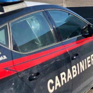 Giuseppe Sebastiani, carabiniere in pensione morto travolto da un albero vicino Rimini