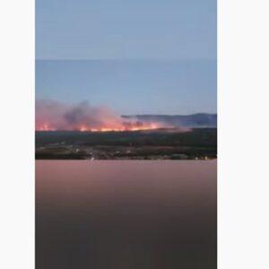 Incendio a Saint Tropez, sfollate migliaia di persone tra residenti e turisti VIDEO