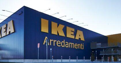 Ikea assume diplomati e laureati: le figure ricercate, i requisiti e come fare domanda